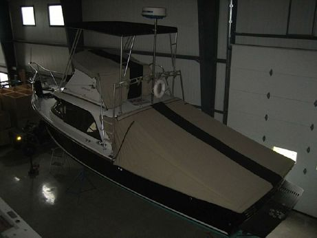 1962 Bertram 31 Sportfisher