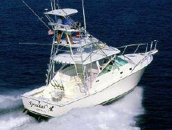 35' Cabo Yachts 35 Express