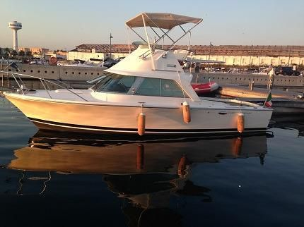 1976 Riva Bertram 25 SPORT FISHERMAN