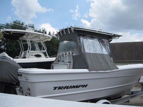 2009 Triumph 235 CC