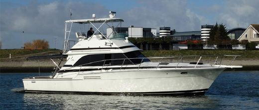 1987 Bertram 46.6 Flybridge Motor Yacht
