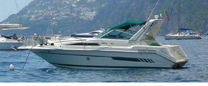 1992 Sea Ray Sundancer 290