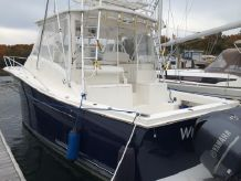 2010 Luhrs 37 OB Canyon Series