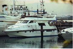 1999 Kha Shing 55