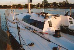 1993 Nelson / Marek 43