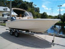 2015 Scout Boats 195 SF