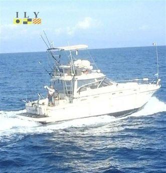 2002 Cayman Tuna Tower Walk Around