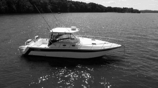 2007 Pro Kat 3660 Sportfish