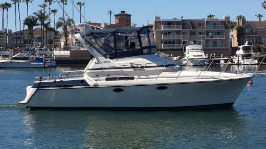 1989 Navigator 336