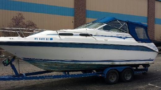 1993 Sea Ray 250 EC