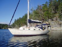 1984 Sea Sprite 30