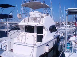 2003 Riviera Marine RIVIERA 33.5 FLY