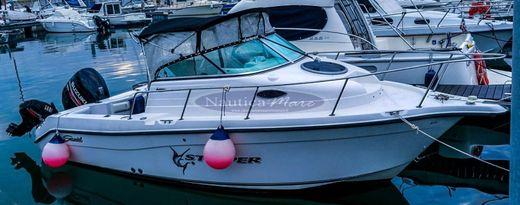 2006 Seaswirl Striper 2101 WA FB