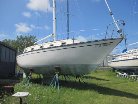1981 Hunter Shoaldraft