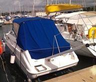 1996 Sea Ray Boats Sundancer 240