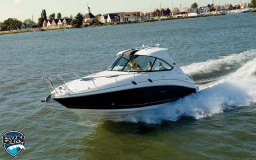 2010 Sea Ray 305 hardtop