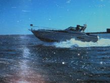 1988 Sea Ray 390 Express Cruiser diesels