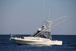 1989 Blackfin Combi 32