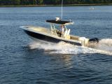 photo of 29' Chris Craft Catalina Sun Tender