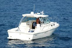 2002 Boston Whaler DEFIANCE 350