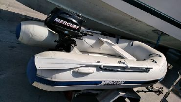 2013 Mercury Inflatables D 250