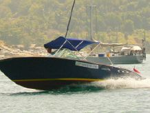 2010 Custom Built Dutch Pike