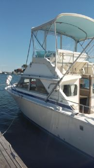 1982 Bertram 28 Flybridge