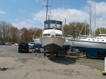 1979 Bertram 28 Flybridge CRUISER