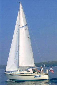 1984 Lm Mermaid 315