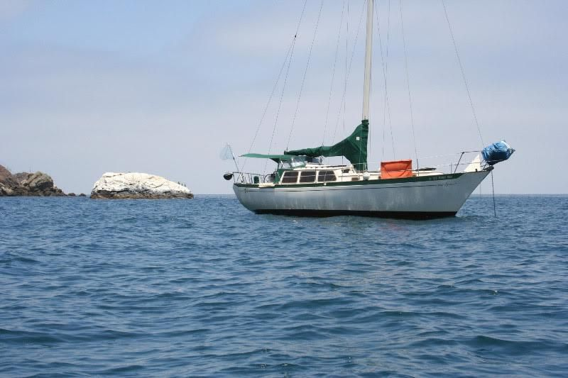 Islander Freeport  For Sale