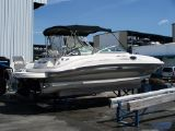 photo of 24' Sea Ray 240 Sundeck