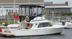 1990 Blackfin 29 Flybridge