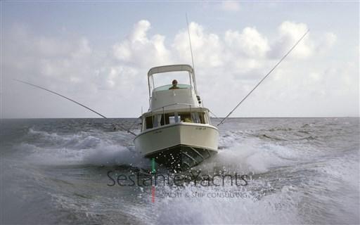 1987 Bertram Yacht 25 Caribbean