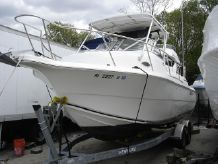 2006 Sea Fox 257 walkaround