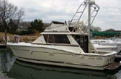 1984 Trojan 36 Convertible Sportfish