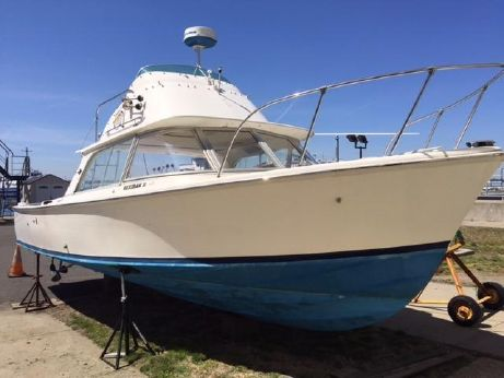 1973 Bertram 31 Flybridge Cruiser