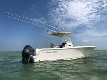 2018 Sailfish 241