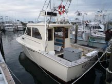 1974 South Hampton Ray Hunt Custom Sportfish