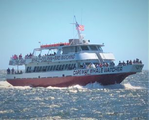1986 Aluminum Boats Inc whale watch dinner ferry