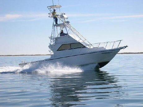 2000 Sea Hawk SPORT FISH