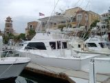 photo of 35' Cabo Flybridge