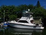 photo of 46' Ocean Super Sport 46