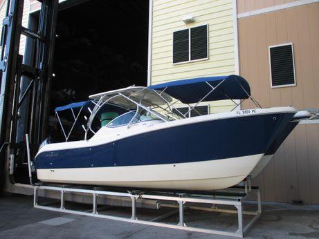2010 World Cat 290 DC