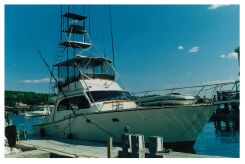 1981 Post Sportfish