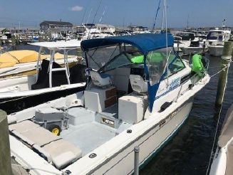 1989 Wellcraft 2800 COASTAL w only 800 HRS.