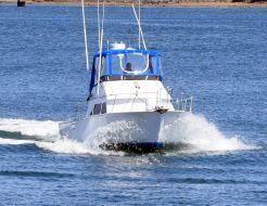 thumbnail photo 1: 1992 Blackman Sportfisher