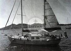 1964 Boer - Sliedrecht VAN DE STAADT 17 MT.