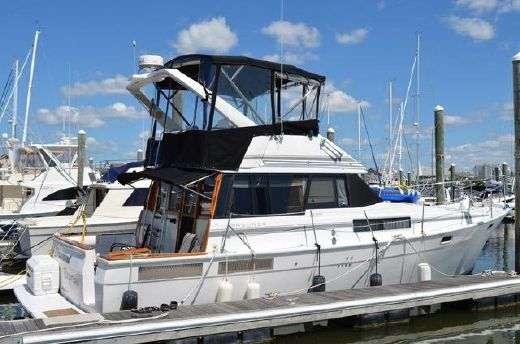 1990 Bayliner 3888 Flybridge Motor Yacht