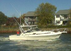 1990 Blackfin 32 Combi