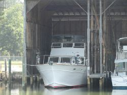 photo of  46' Tiffany